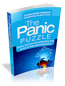 The Panic Puzzle ebook